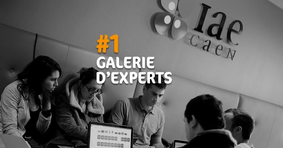 IAE Caen - Galerie d'Experts #1