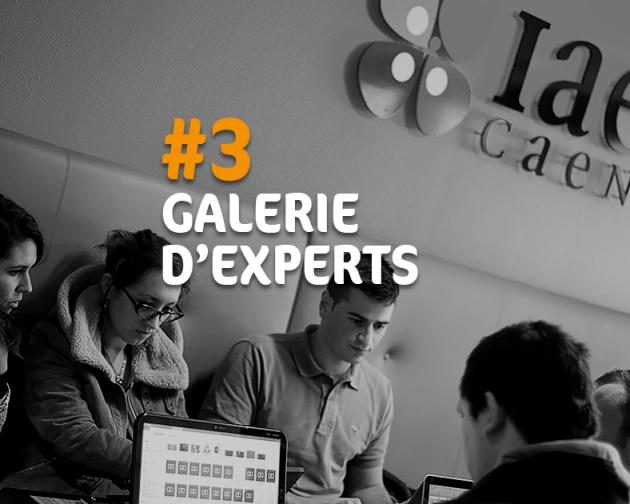 IAE Caen - Galerie d'Experts #3