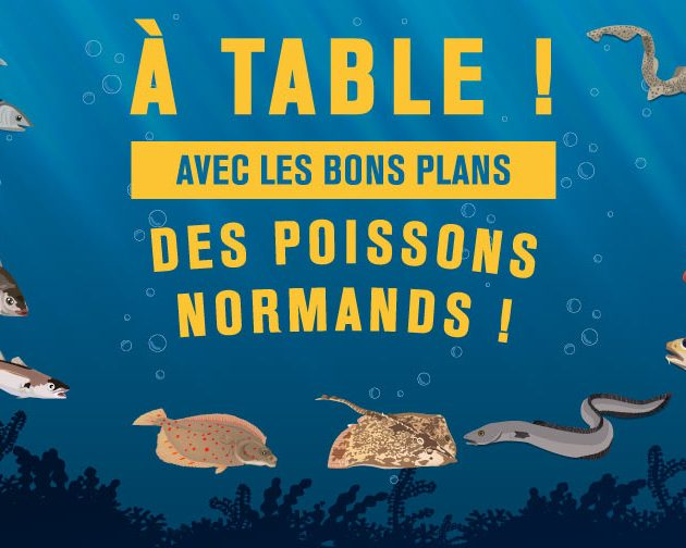 Poisson bon Plan Normand